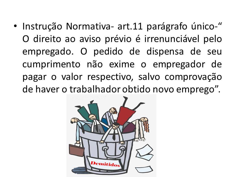 Instrução Normativa- art