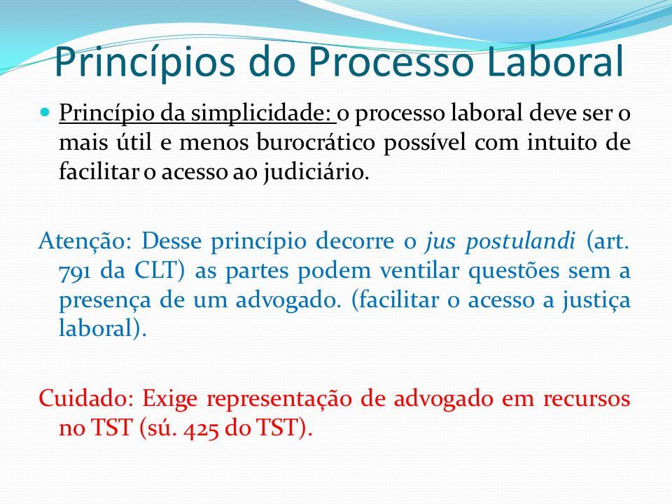 Princípios do Processo Laboral