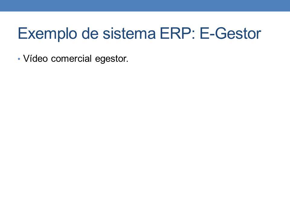 Exemplo de sistema ERP: E-Gestor