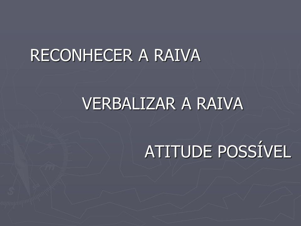 RECONHECER A RAIVA VERBALIZAR A RAIVA ATITUDE POSSÍVEL