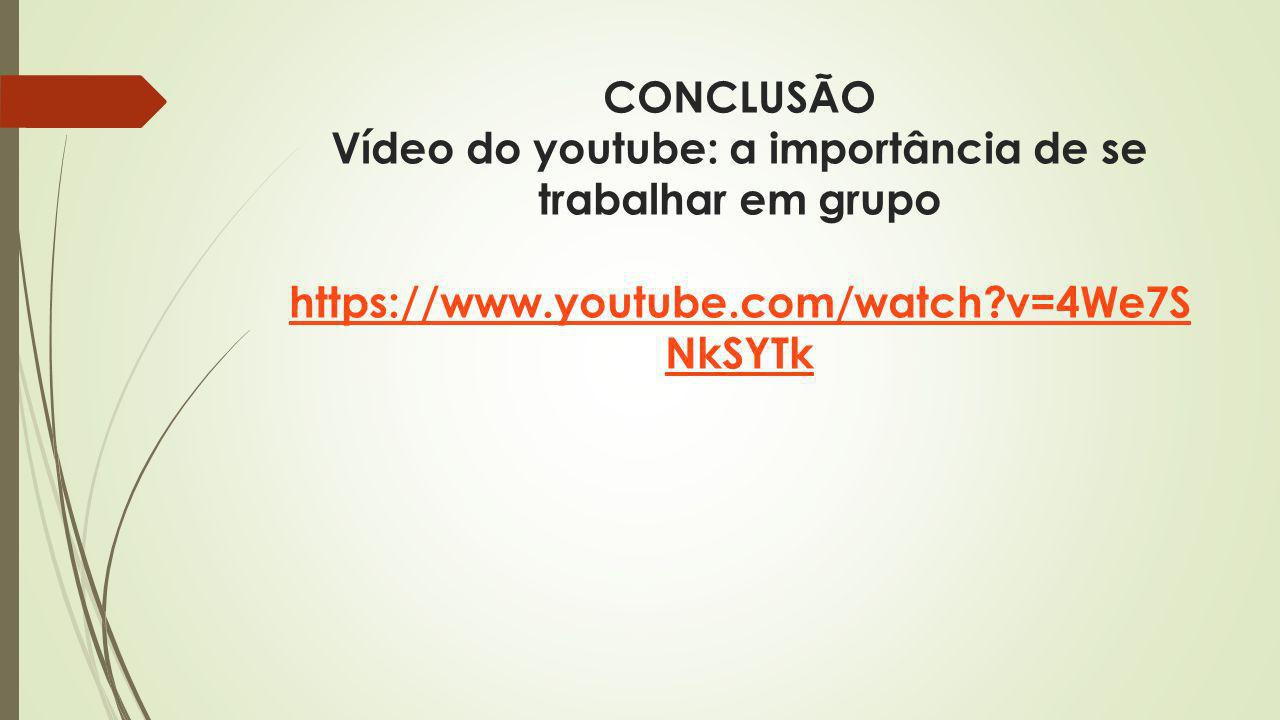 CONCLUSÃO Vídeo do youtube: a importância de se trabalhar em grupo https://www.youtube.com/watch v=4We7SNkSYTk