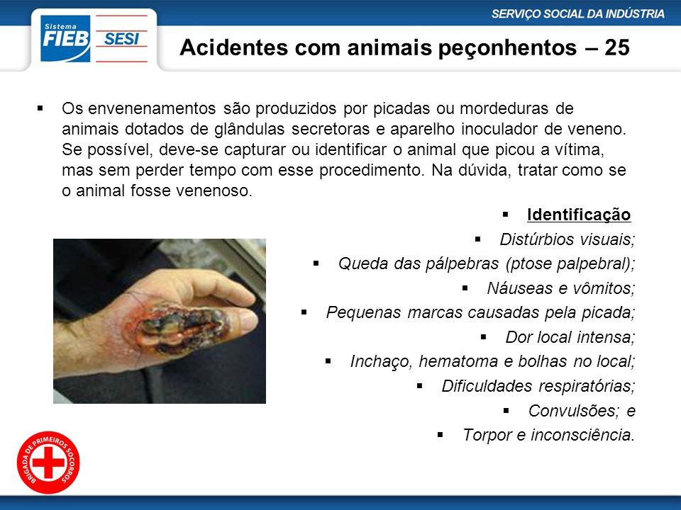 Acidentes com animais peçonhentos – 25