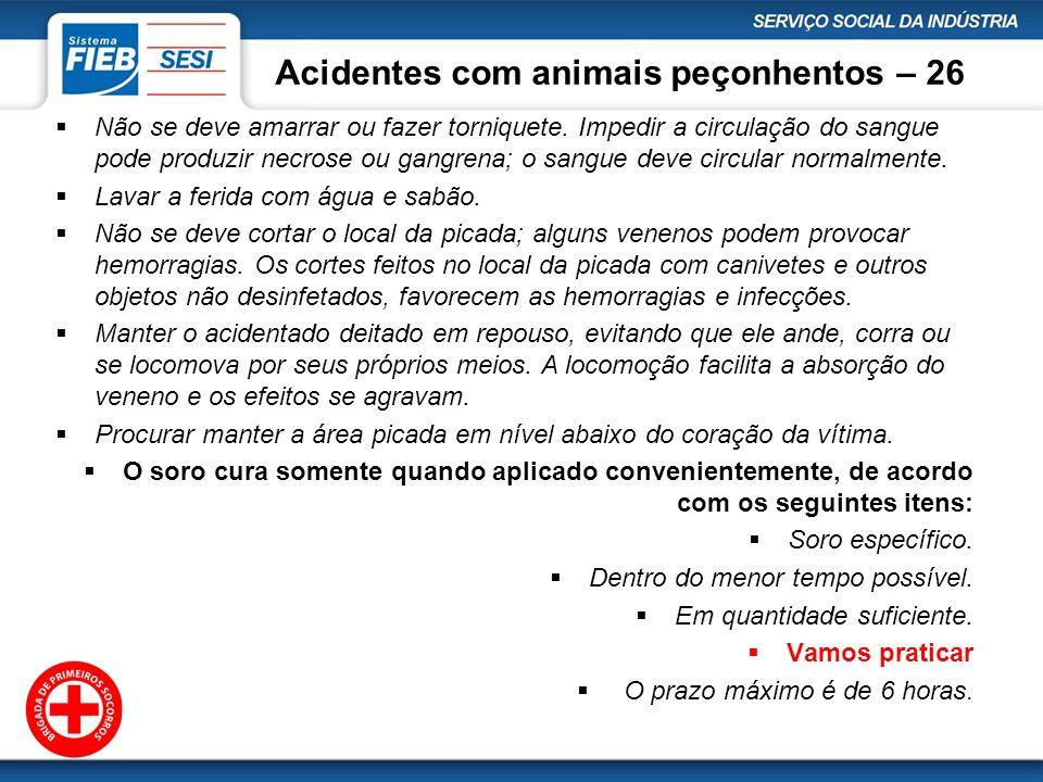 Acidentes com animais peçonhentos – 26