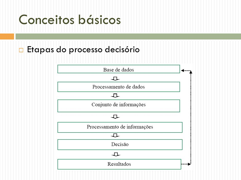 Conceitos básicos Etapas do processo decisório