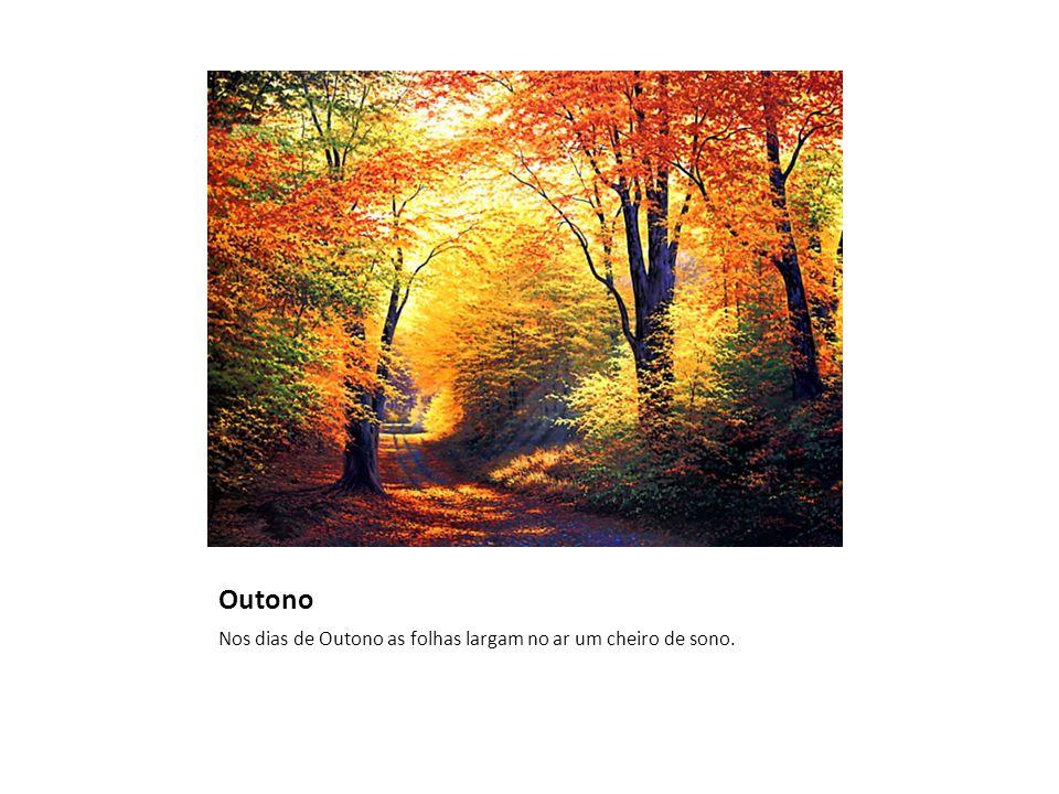 Outono Nos dias de Outono as folhas largam no ar um cheiro de sono.