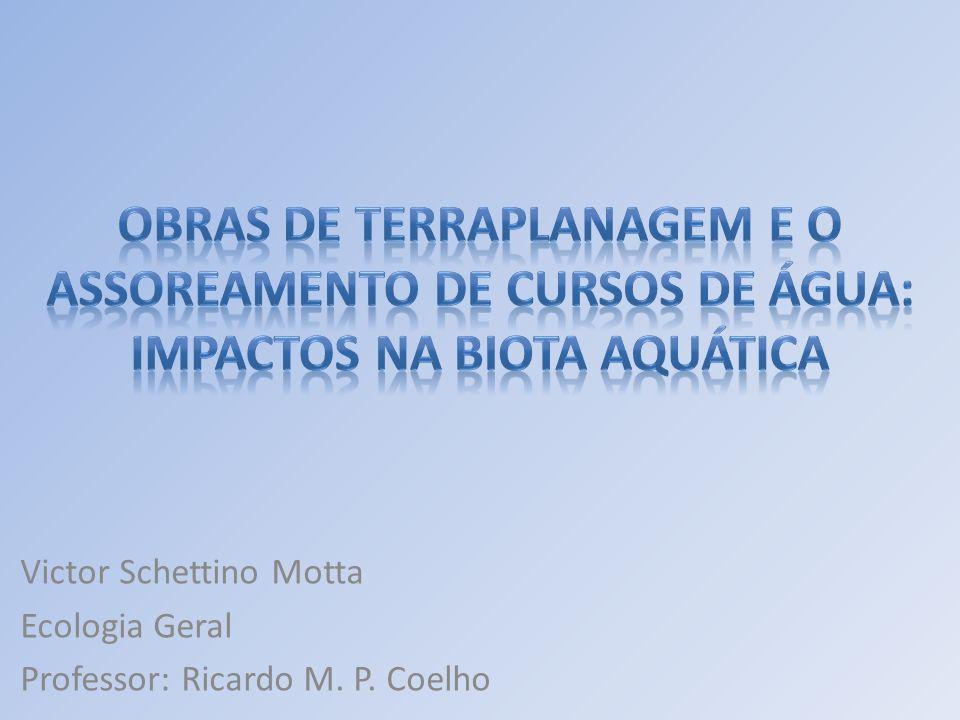 Victor Schettino Motta Ecologia Geral Professor: Ricardo M. P. Coelho
