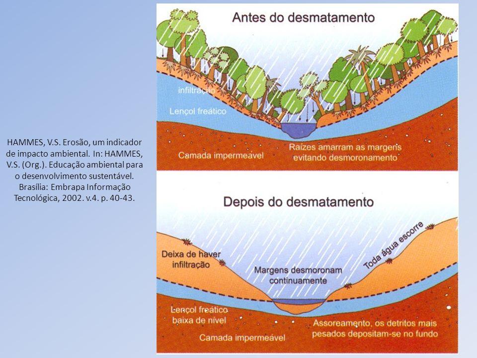 HAMMES, V. S. Erosão, um indicador de impacto ambiental. In: HAMMES, V