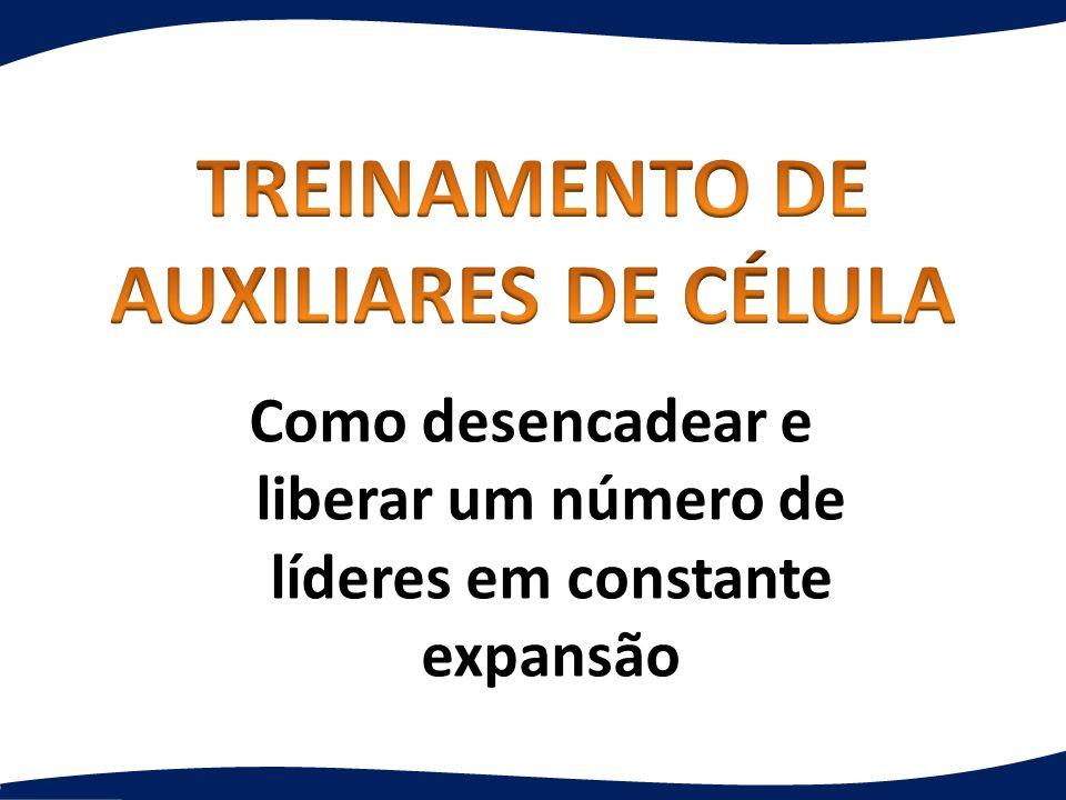 TREINAMENTO DE AUXILIARES DE CÉLULA