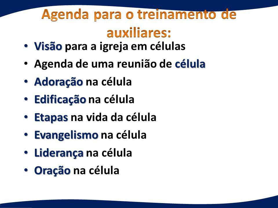Agenda para o treinamento de auxiliares: