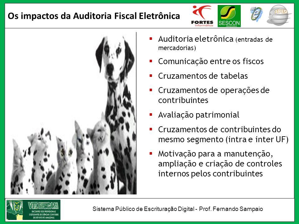 Os impactos da Auditoria Fiscal Eletrônica