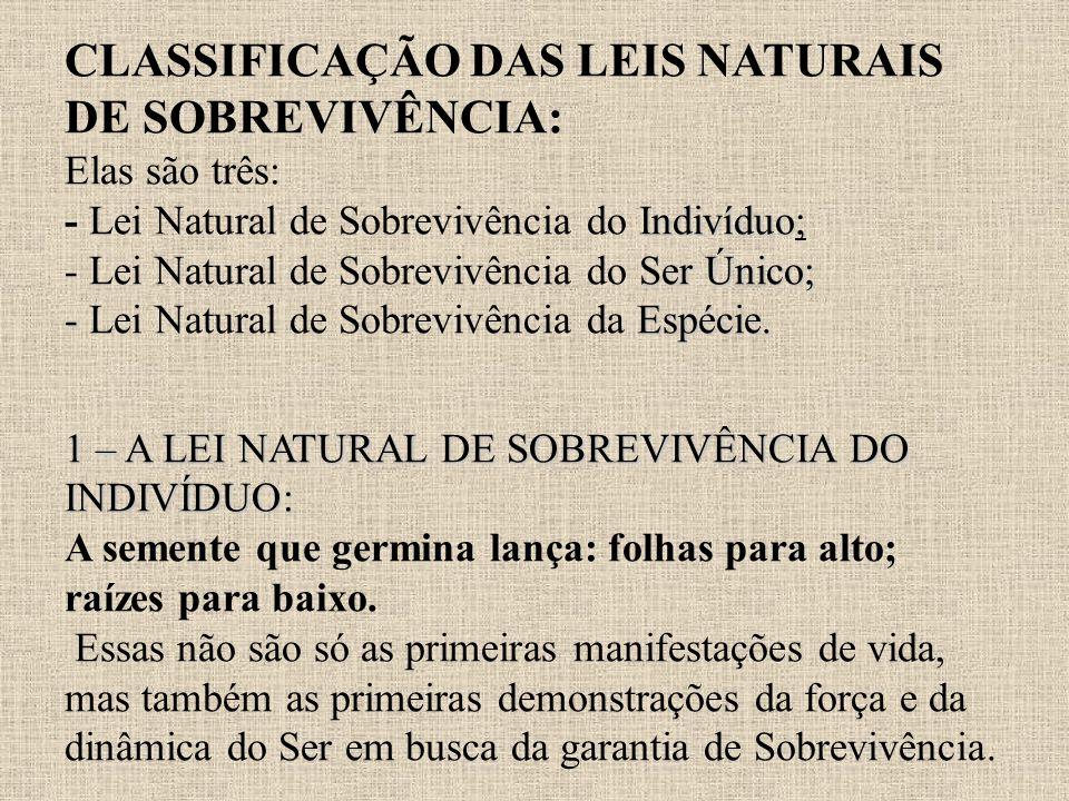 CLASSIFICAÇÃO DAS LEIS NATURAIS DE SOBREVIVÊNCIA: Elas são três: - Lei Natural de Sobrevivência do Indivíduo; - Lei Natural de Sobrevivência do Ser Único; - Lei Natural de Sobrevivência da Espécie.