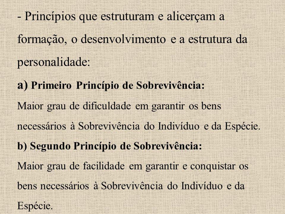 - Princípios que estruturam e alicerçam a formação, o desenvolvimento e a estrutura da personalidade: a) Primeiro Princípio de Sobrevivência: Maior grau de dificuldade em garantir os bens necessários à Sobrevivência do Indivíduo e da Espécie.