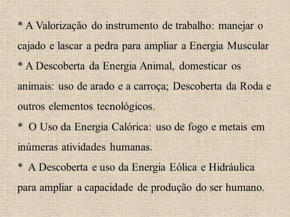 * * A Valorização do instrumento de trabalho: manejar o cajado e lascar a pedra para ampliar a Energia Muscular * A Descoberta da Energia Animal, domesticar os animais: uso de arado e a carroça; Descoberta da Roda e outros elementos tecnológicos.