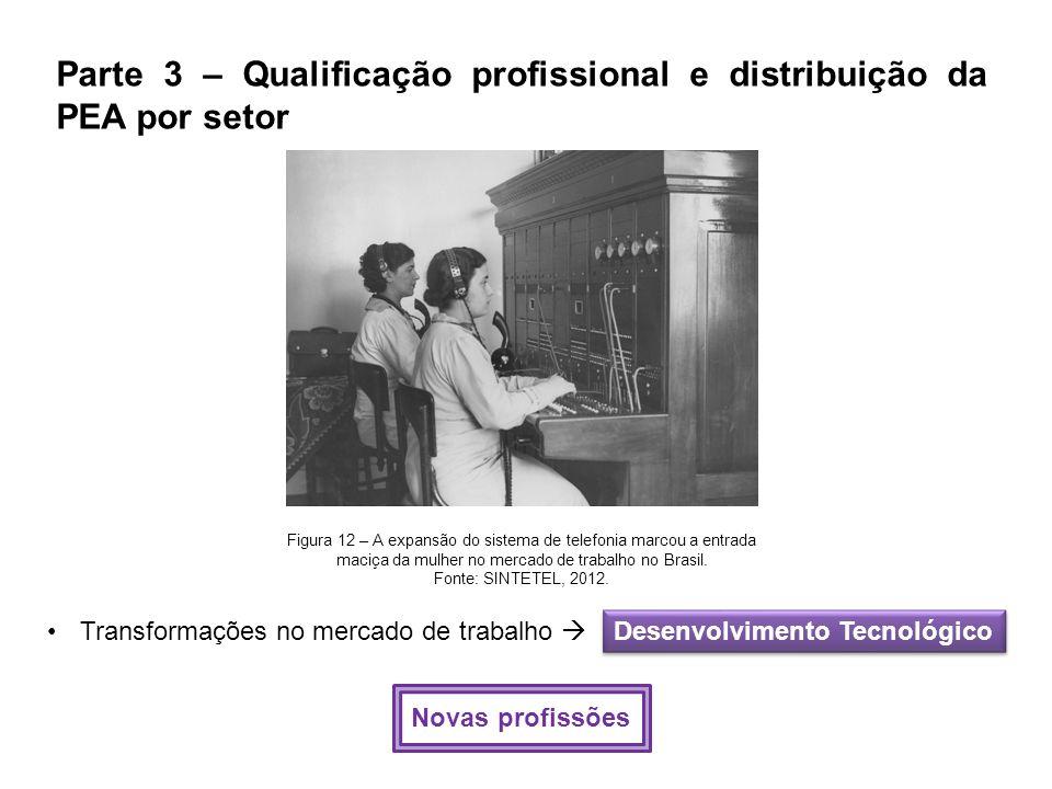 Parte 3 – Qualificação profissional e distribuição da PEA por setor