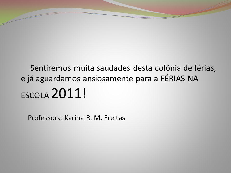 Professora: Karina R. M. Freitas