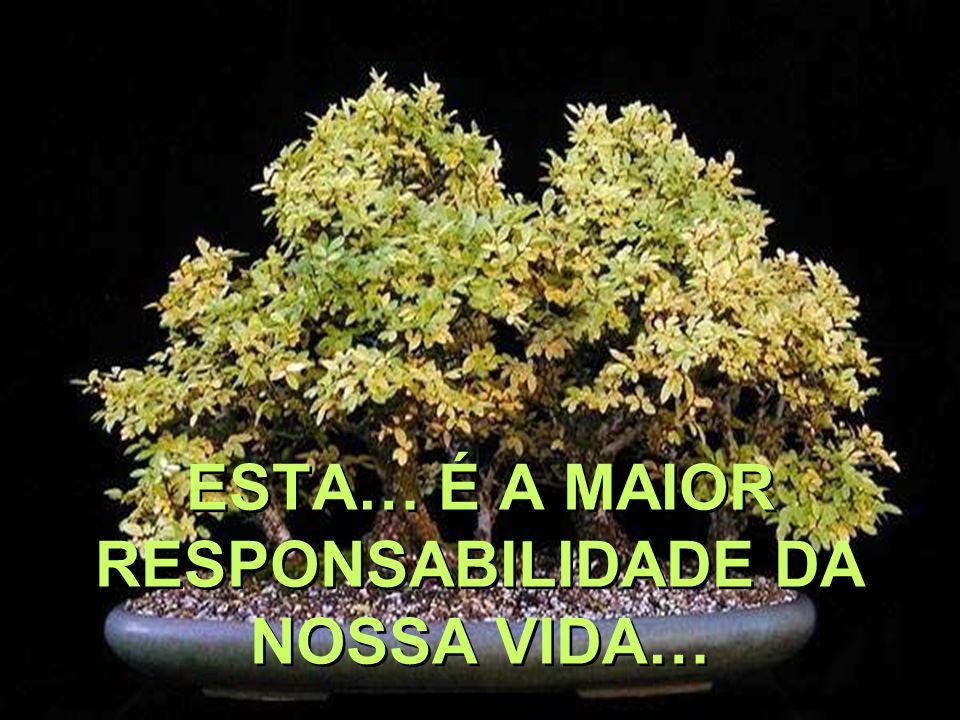 ESTA… É A MAIOR RESPONSABILIDADE DA NOSSA VIDA…