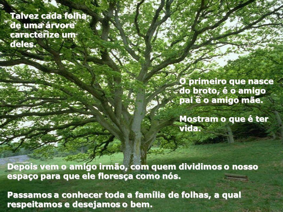 Talvez cada folha de uma árvore caracterize um deles.