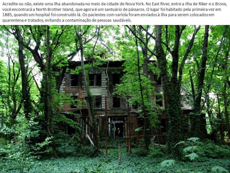Acredite ou não, existe uma ilha abandonada no meio da cidade de Nova York.