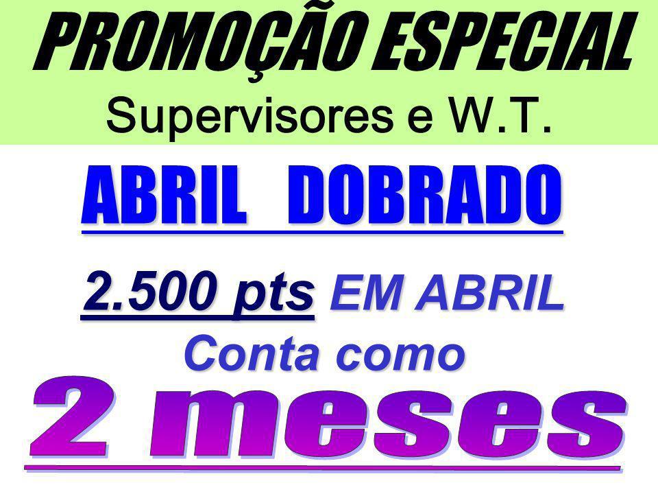 PROMOÇÃO ESPECIAL Supervisores e W.T.