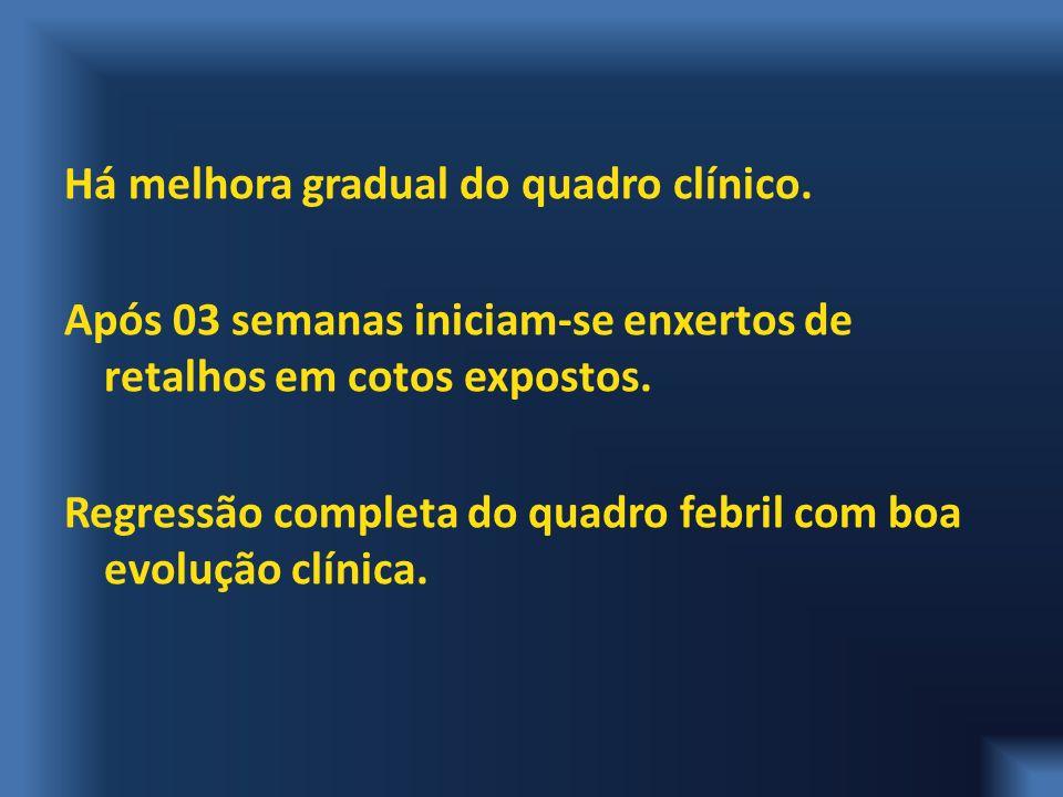 Há melhora gradual do quadro clínico.