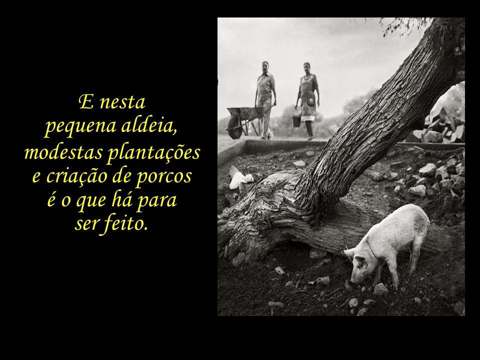 E nesta pequena aldeia, modestas plantações e criação de porcos é o que há para ser feito.