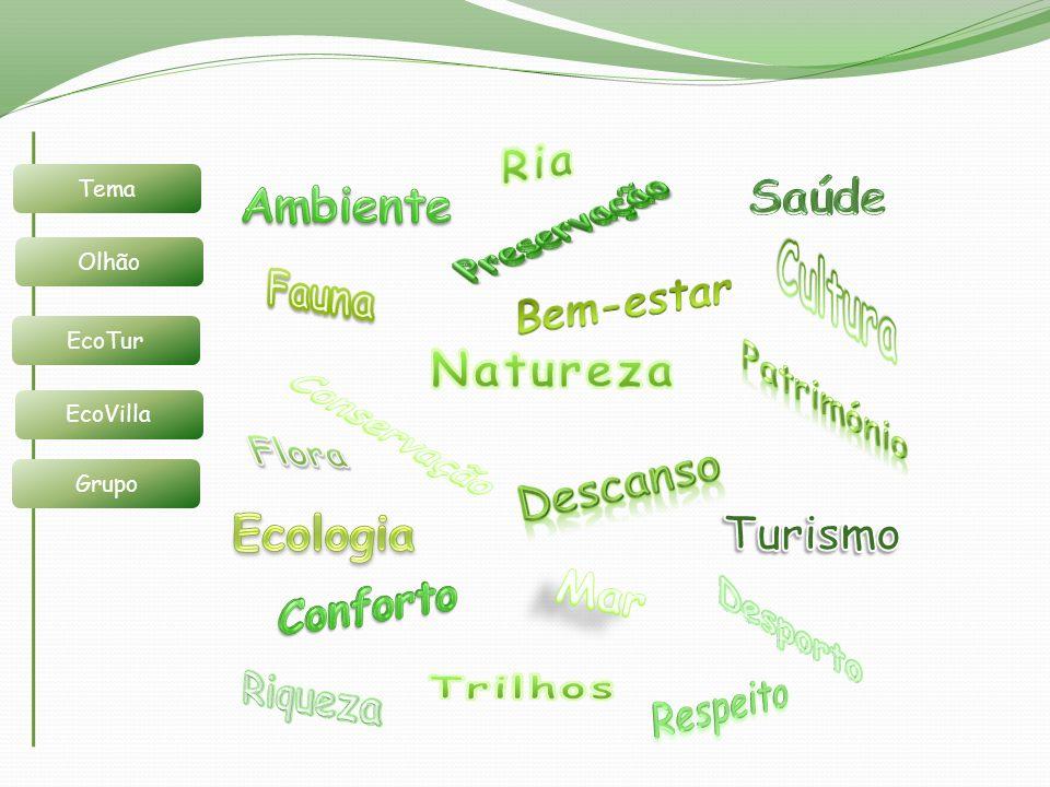 Cultura Ria Saúde Ambiente Preservação Fauna Bem-estar Natureza