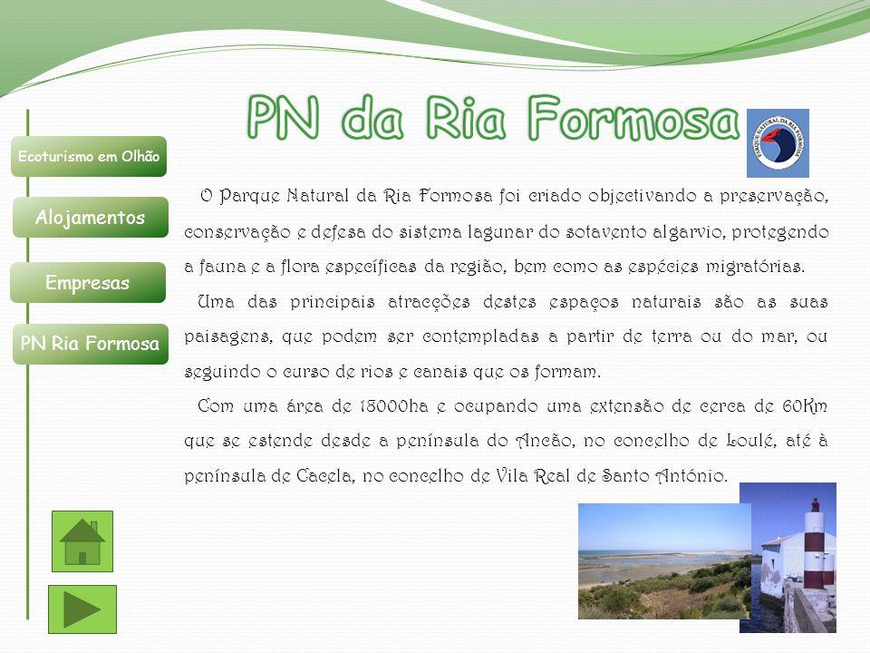 PN da Ria Formosa Ecoturismo em Olhão. Alojamentos. Empresas. PN Ria Formosa.