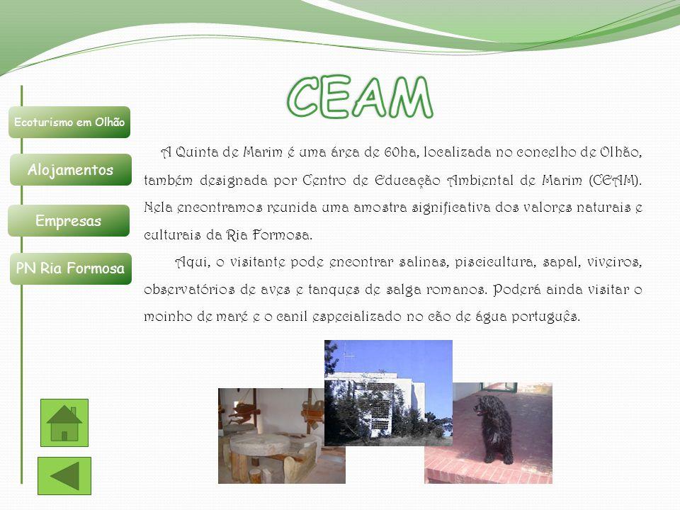 CEAM Ecoturismo em Olhão. Alojamentos. Empresas. PN Ria Formosa.
