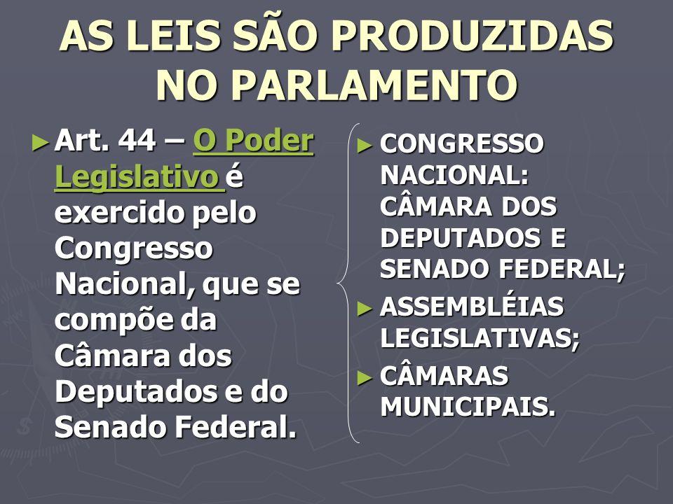 AS LEIS SÃO PRODUZIDAS NO PARLAMENTO