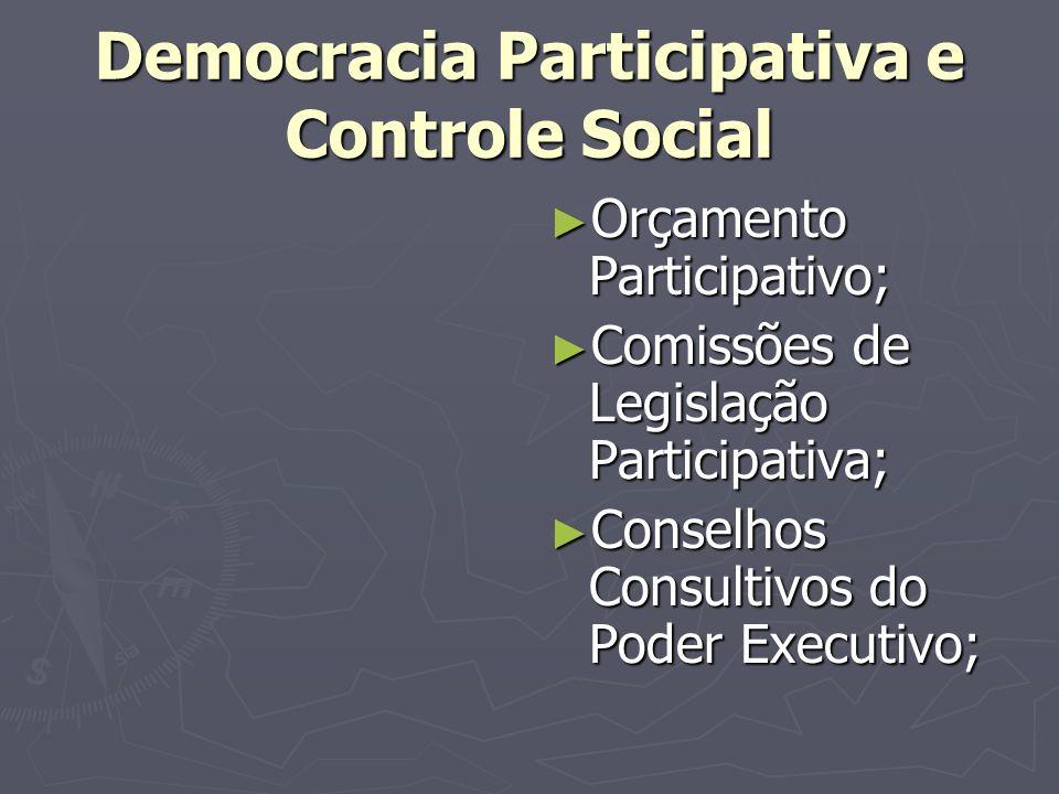 Democracia Participativa e Controle Social