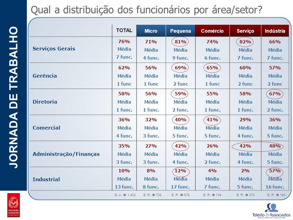 Qual a distribuição dos funcionários por área/setor