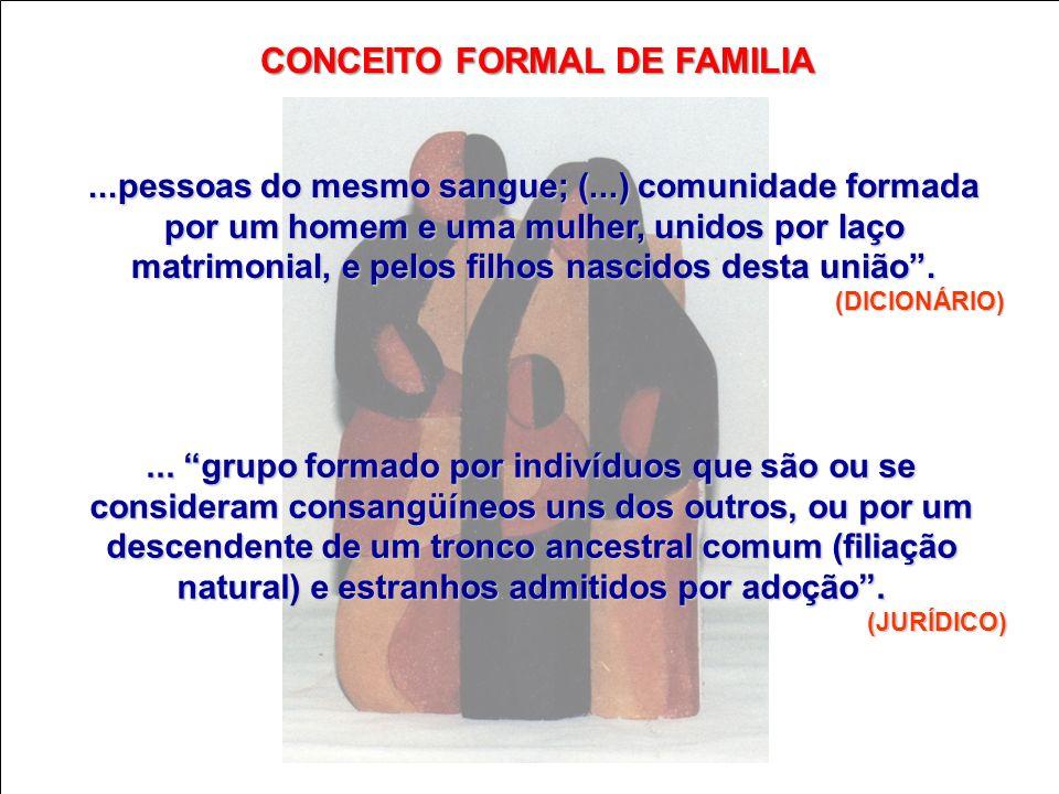 CONCEITO FORMAL DE FAMILIA