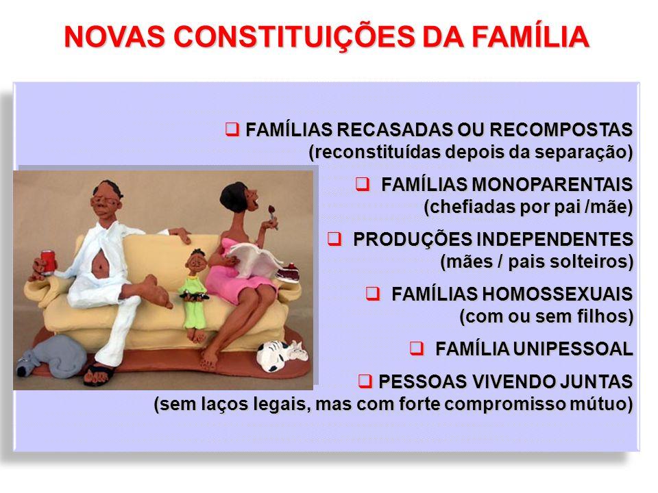 NOVAS CONSTITUIÇÕES DA FAMÍLIA