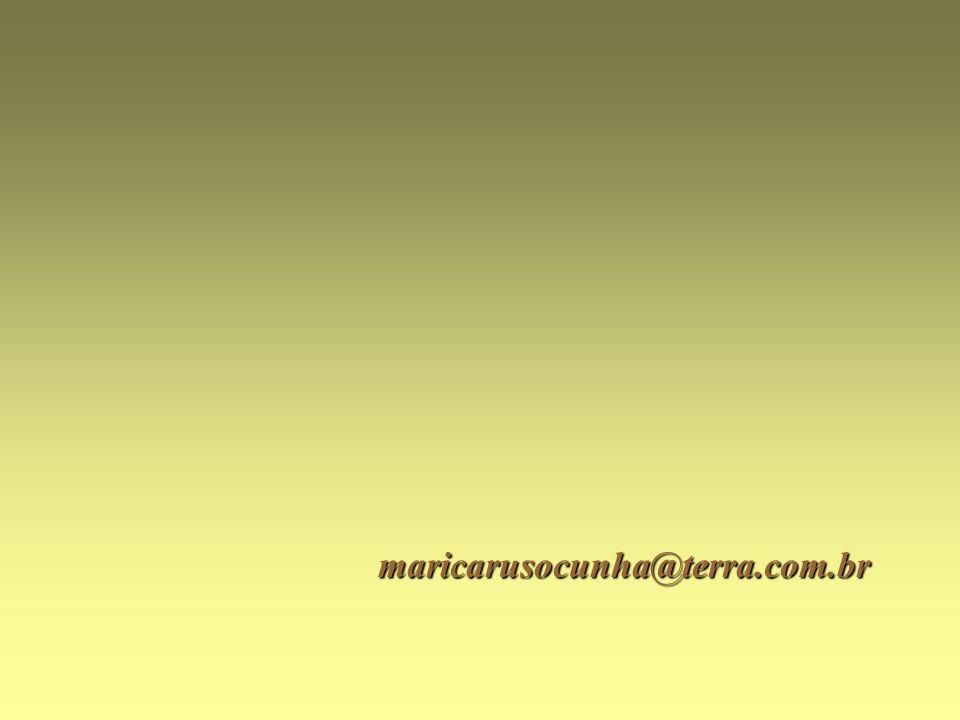 maricarusocunha@terra.com.br