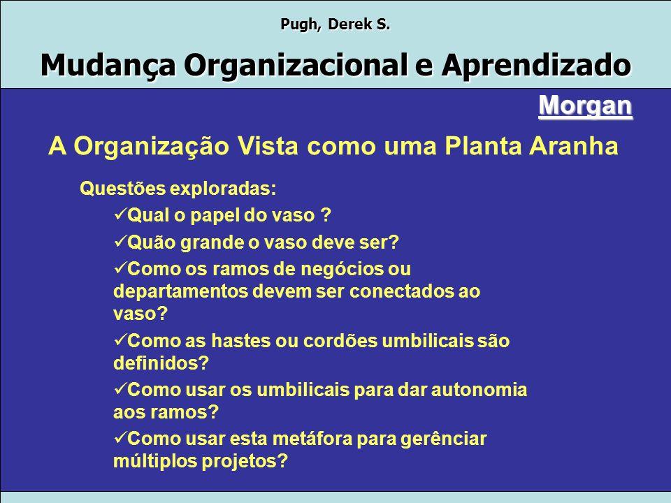 A Organização Vista como uma Planta Aranha