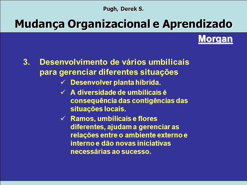 Morgan Desenvolvimento de vários umbilicais para gerenciar diferentes situações. Desenvolver planta híbrida.