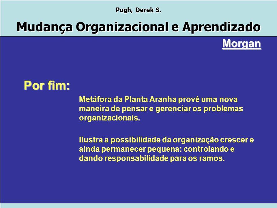 Morgan Por fim: Metáfora da Planta Aranha provê uma nova maneira de pensar e gerenciar os problemas organizacionais.
