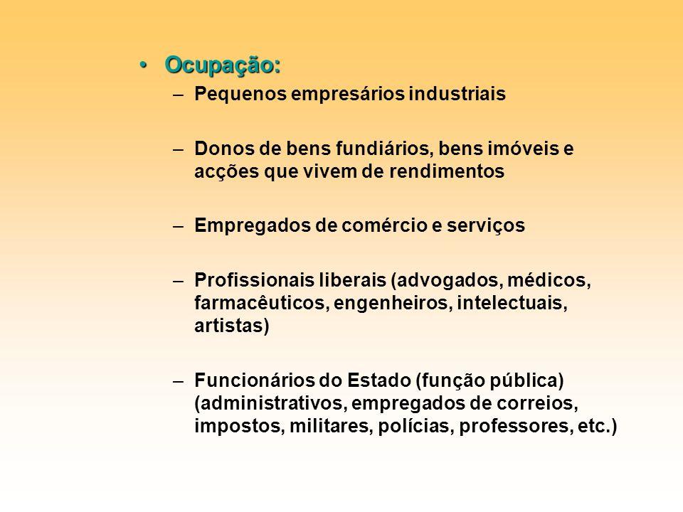 Ocupação: Pequenos empresários industriais