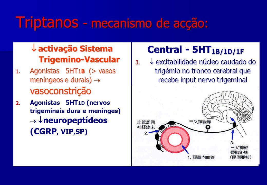 Triptanos - mecanismo de acção: