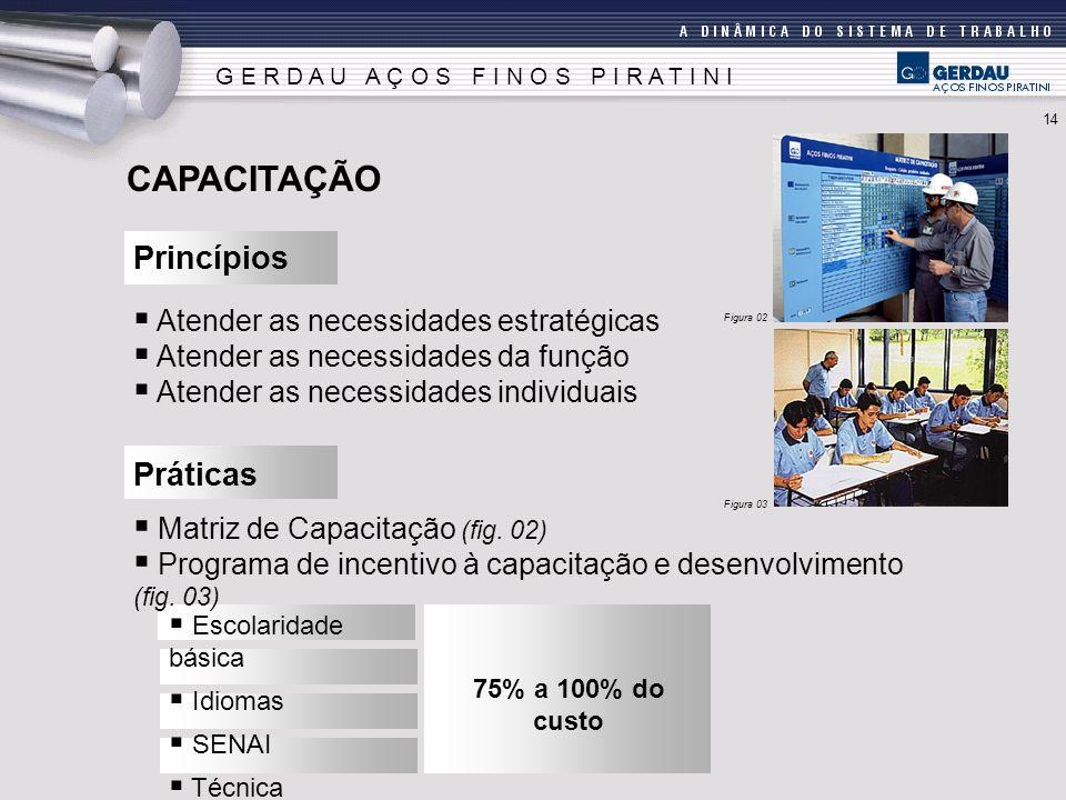 CAPACITAÇÃO Princípios Práticas Atender as necessidades estratégicas