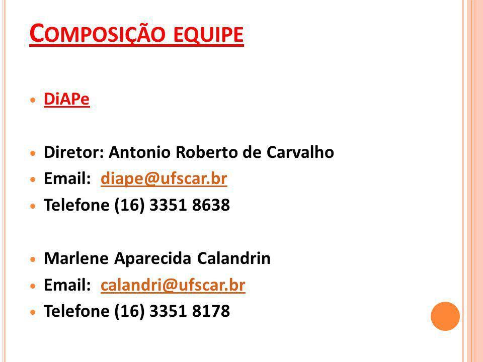 Composição equipe DiAPe Diretor: Antonio Roberto de Carvalho
