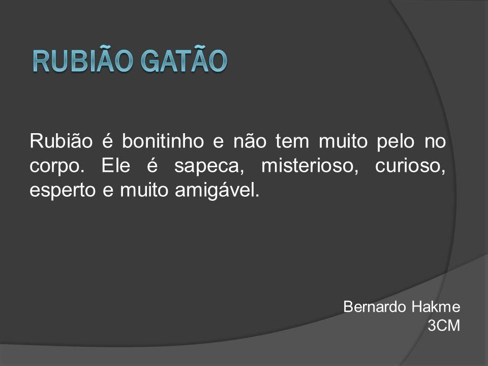 RUBIÃO GATÃO Rubião é bonitinho e não tem muito pelo no corpo. Ele é sapeca, misterioso, curioso, esperto e muito amigável.