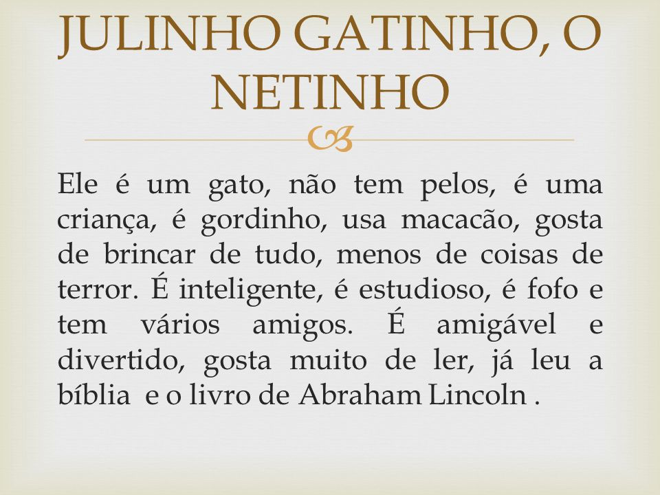 JULINHO GATINHO, O NETINHO