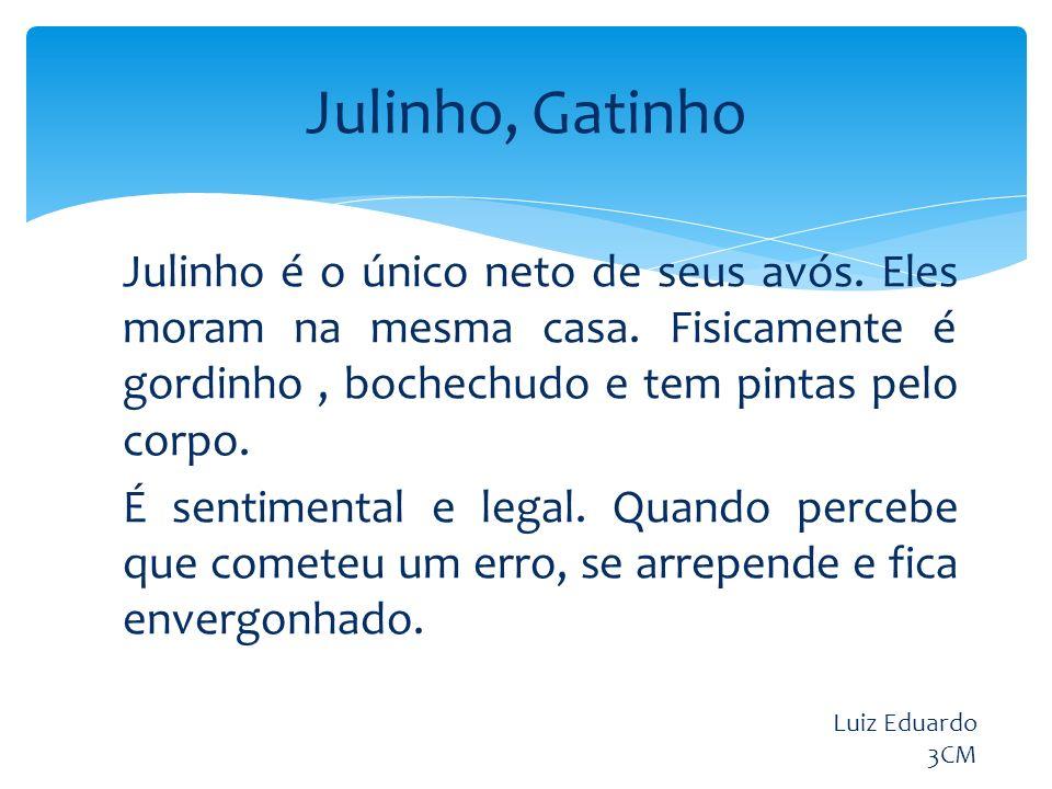 Julinho, Gatinho