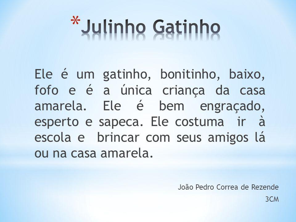 Julinho Gatinho