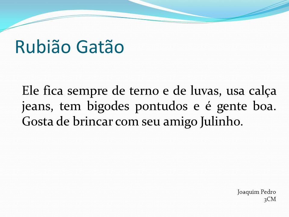 Rubião Gatão Ele fica sempre de terno e de luvas, usa calça jeans, tem bigodes pontudos e é gente boa. Gosta de brincar com seu amigo Julinho.