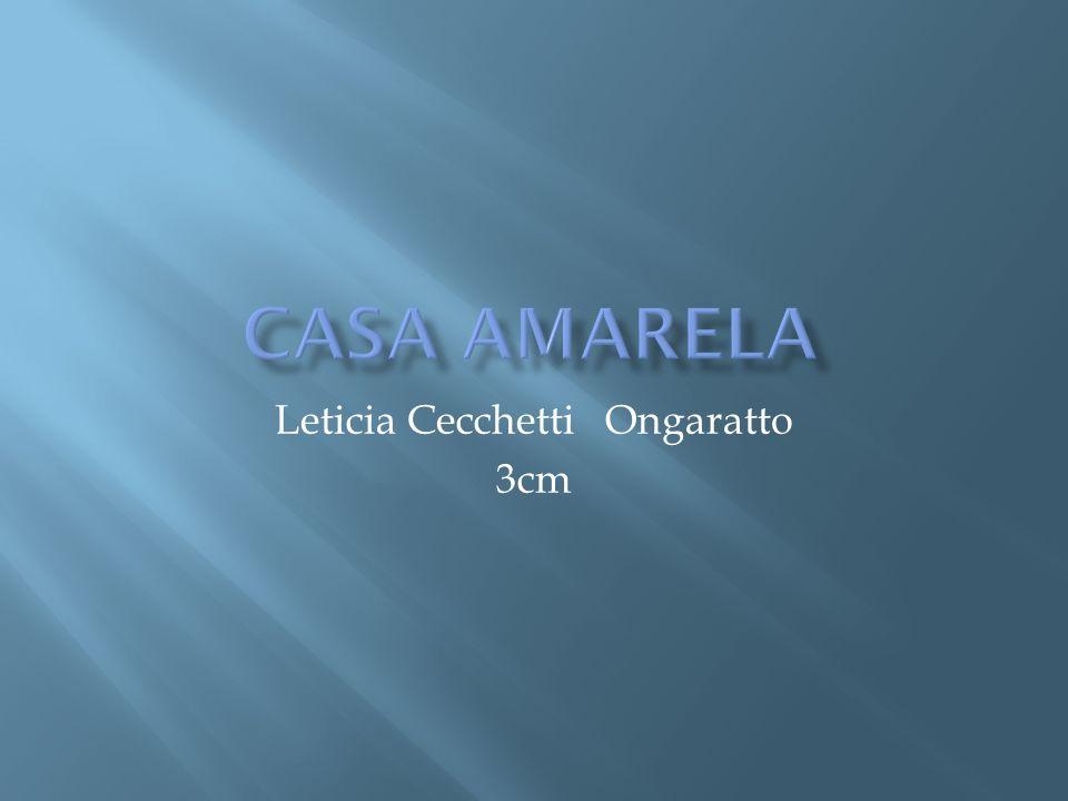 Leticia Cecchetti Ongaratto 3cm