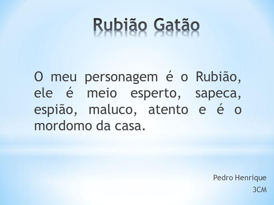 Rubião Gatão O meu personagem é o Rubião, ele é meio esperto, sapeca, espião, maluco, atento e é o mordomo da casa.