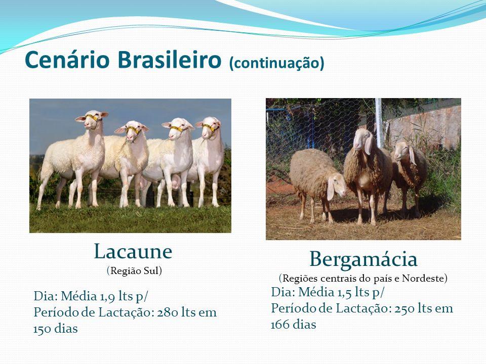 Cenário Brasileiro (continuação)