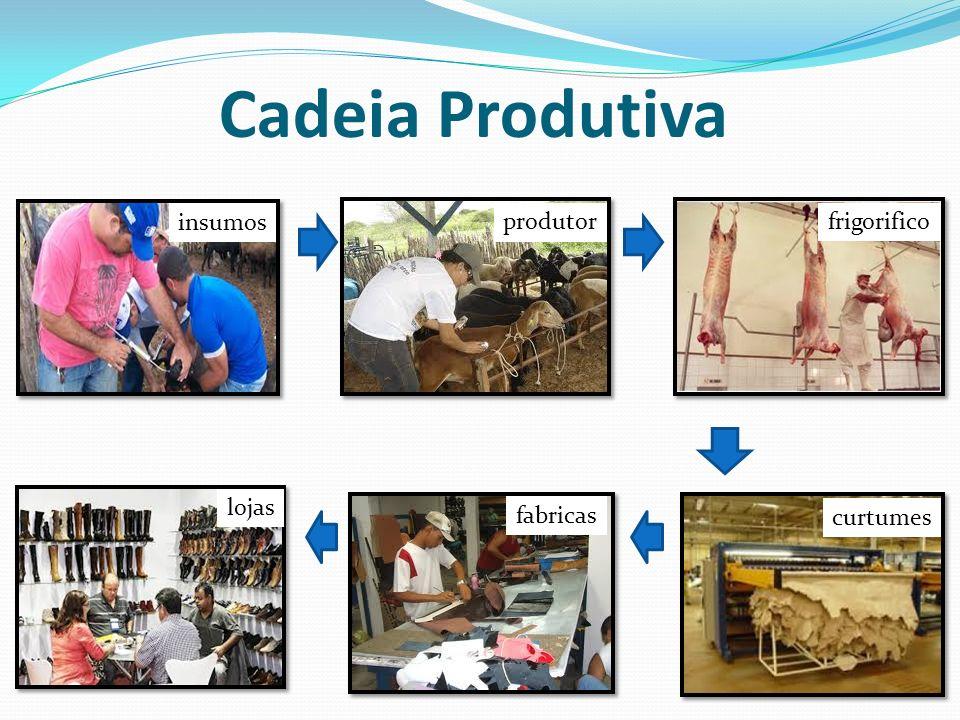 Cadeia Produtiva insumos produtor frigorifico lojas fabricas curtumes
